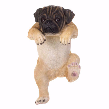 "Picture of Climbing Pug ""Lola"" Decor"