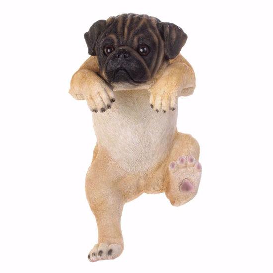 "Picture of Climbing Pug ""Lola"" Decor"