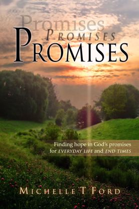 Picture of Promises, Promises, Promises By Michelle Ford